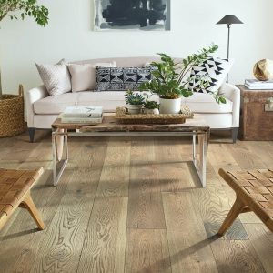 Living room flooring | Direct Carpet Unlimited