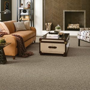 Living room Carpet | Direct Carpet Unlimited
