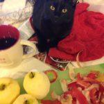 Black cat | Direct Carpet Unlimited