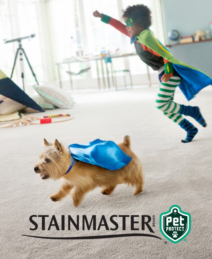 Stainmaster | Direct Carpet Unlimited