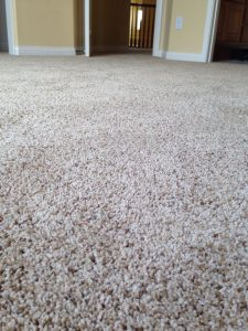 Carpet flooring | Direct Carpet Unlimited