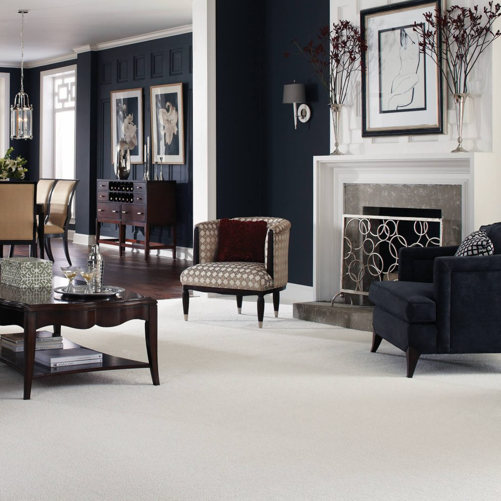 White Carpet in Living room | Direct Carpet Unlimited