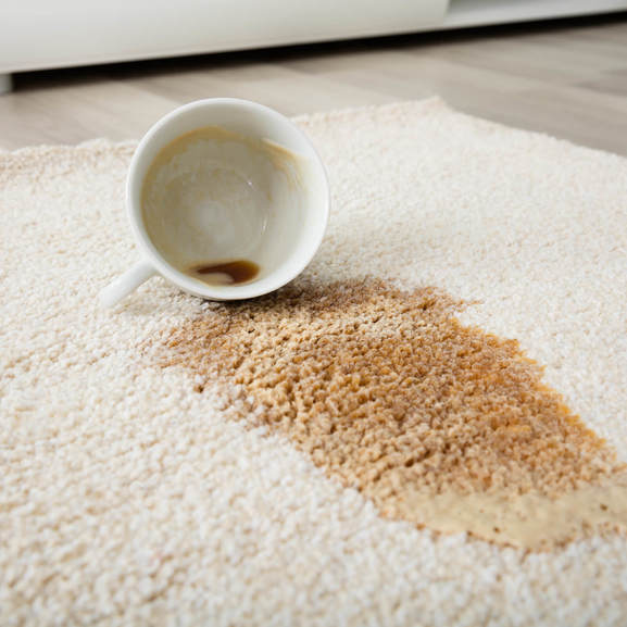 Coffee spill on area rug | Direct Carpet Unlimited